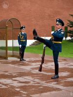 The Kremlin Step of Honor Guard