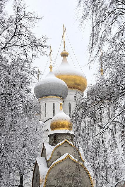 Snow Covered Church Cupolas of Novodevichy Framed by Trees