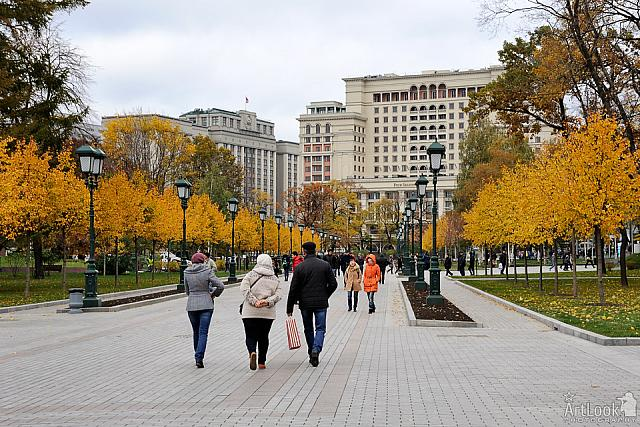 Walking up the Main Alley of Alexander Garden in Autumn