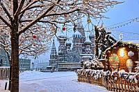 St. Basil's Cathedral Framed by a Tree in Snow