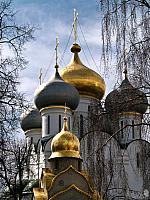 Grand Domes of Smolensky Cathedral (Moscow Novodevichy)
