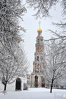 Bell Tower Framed with Snow Covered Trees