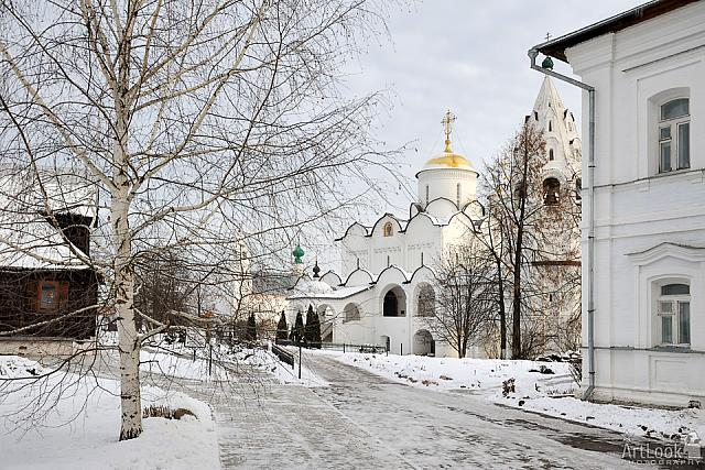 Winter Scene of Pokrovsky Convent framed by Birch Tree