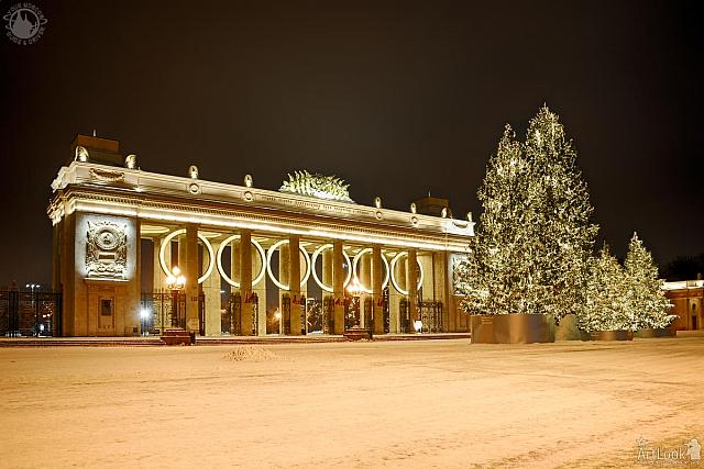 Illuminated Gates of Gorky Park & Christmas Trees in Winter Morning