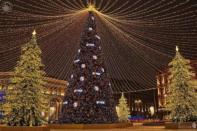 Christmas Trees Under Illuminated Tent at Lubyanka Square