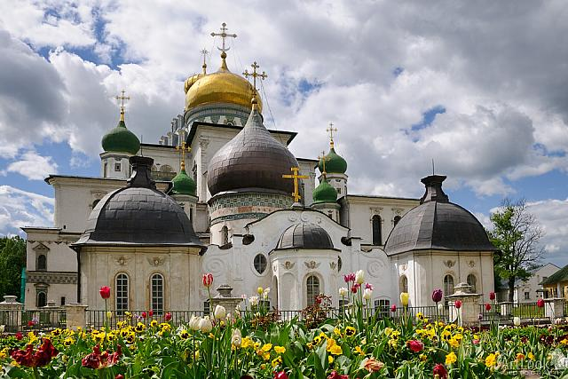 Churches of Russian Palestine Framed with Flowers