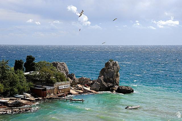 "Seagull Flying over Rocks at Little Quay ""Chekhov's Dacha"""