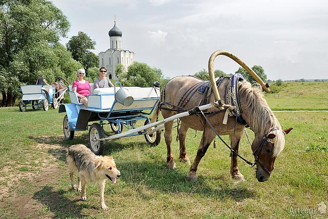 Riding on a horse Cart in Bogolybovo