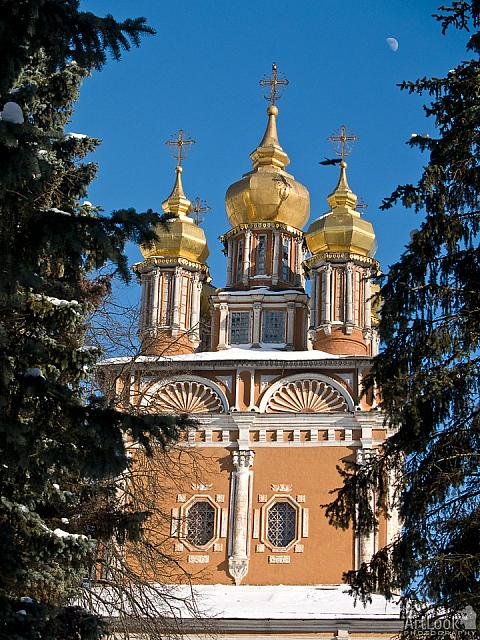 Domes of St. John the Baptist Church (Sergiyev Posad)