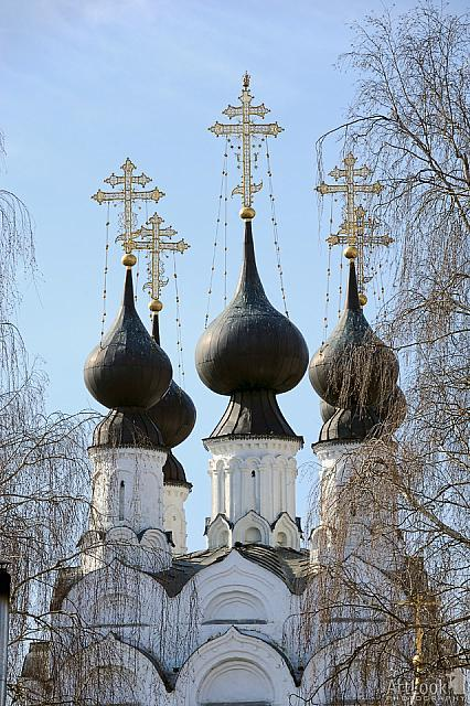 Elegant Black Domes of Troitskaya church framed with trees (Murom)