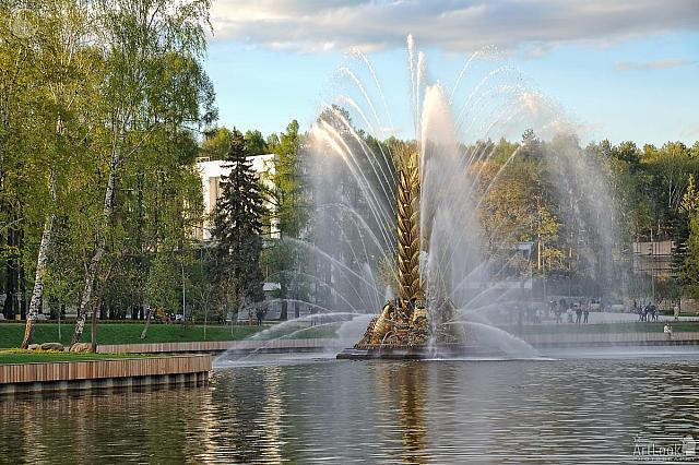 Golden Spike Fountain Framed by Birch Trees at Sunset