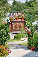 Garden Arch with Flowers