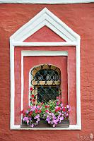 Window with Flowers