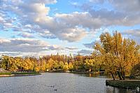 Golden Trees and Middle Tsaritsyno Pond