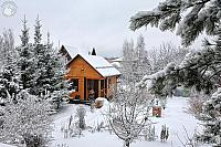 Wooden House Framed by Trees After Snowfall