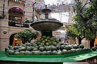 The Harvest Time - Watermelons vs Fountain