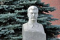 Bust of Joseph Stalin in the Background of a Pine Tree