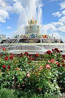 Stone Flower Fountain and Red Roses