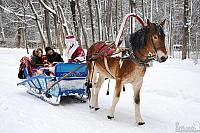 Sledge Ride with Ded Moroz in Arkhangelskoye